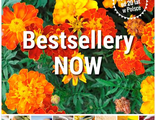Bestsellery NOW®
