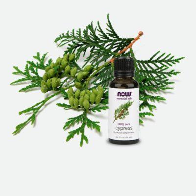 Leśne aromaty
